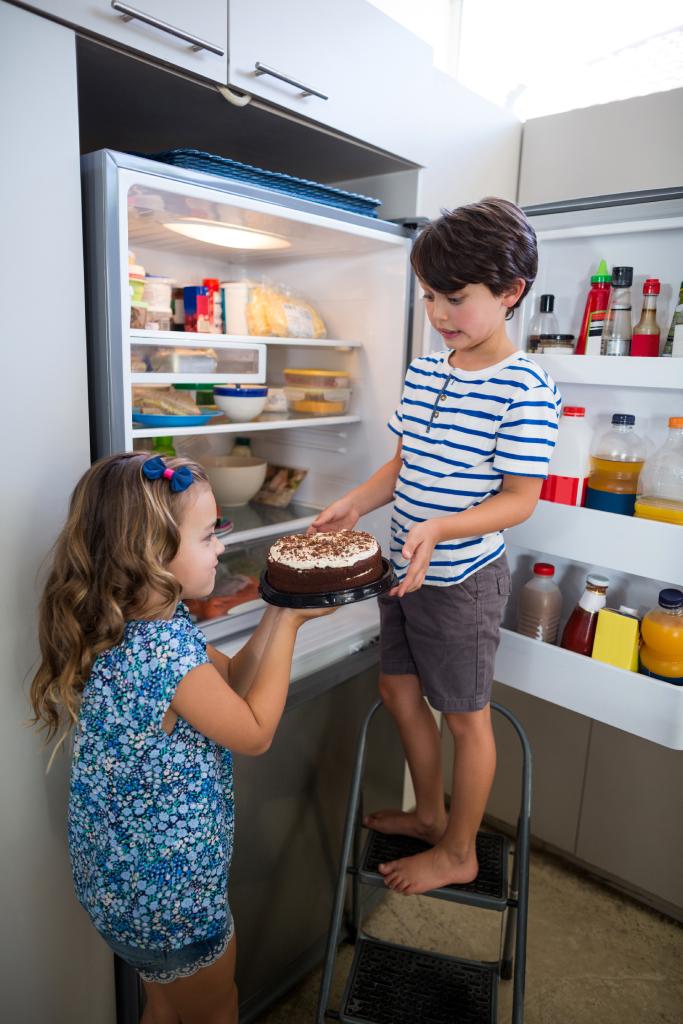 fridge repair Edmonton
